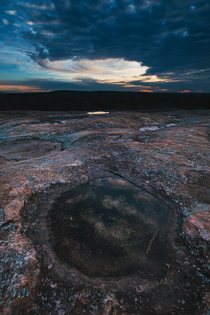 Davidson-Arabia Mountain Nature Reserve 1